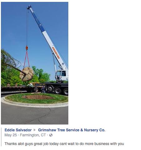 Amazing Crane Work